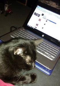 Jethro and the mini laptop