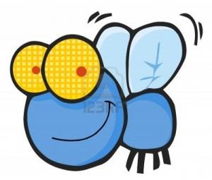 8930322-fly-cartoon-character